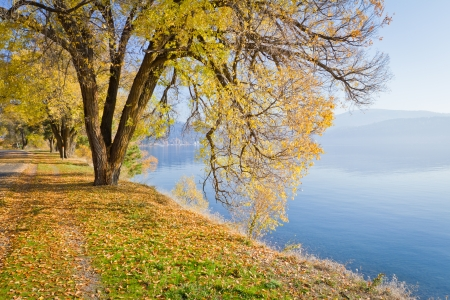 season changing in coeur d Alene Idaho on the centennial trail next to the lake Banco de Imagens