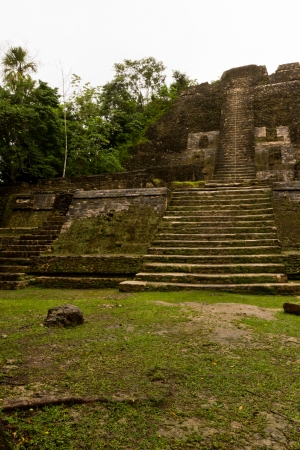 Large ancient Mayan Temple in the jungle of Lamananai Belize