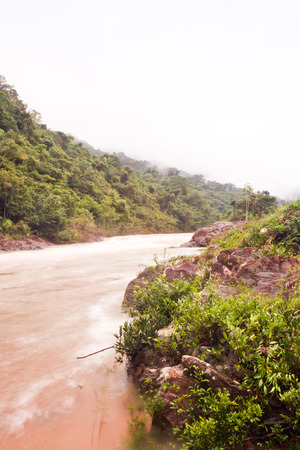 overflowing macal river after severe rain in november 2013 Belize photo