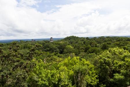 Ancient Mayan ruins in Tikal Guatemala November 2013 스톡 콘텐츠