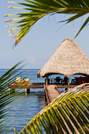 beautiful relaxing beach in a tropical calm  part of Belize