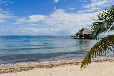 relaxing tropical beach bar on the caribbean waters of Belize
