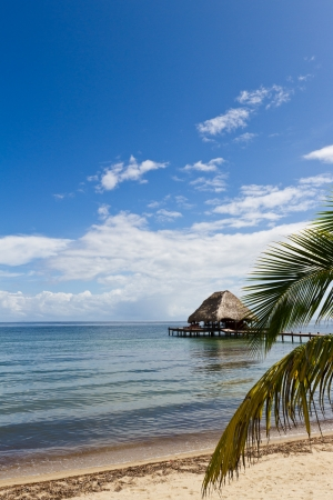 tourism in belize: relaxing tropical beach bar on the caribbean waters of Belize