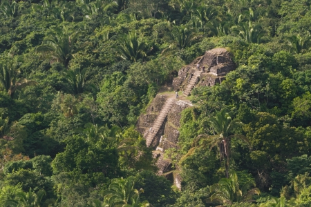 tourism in belize: aerial view of Lamanai maya ruins in the tropical jungle of Belize
