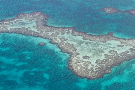 barrier: aerial view of the barrier reef of the coast of San Pedro, Belize. with grassy dark spots on the turquoise waters