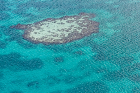 aerial view of the barrier reef of the coast of San Pedro, Belize. with grassy dark spots on the turquoise waters photo