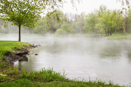 early morning fog lingering over the lake with vivid green trees surrounding it