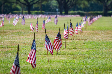 sates: rows of flags on each grave of a Veterans Cemetery in Florida for Veterans day