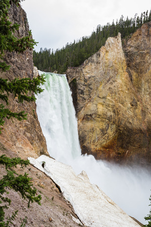 lower yellowstone falls: view of the lower falls in yellowstone national park from half way down the trail