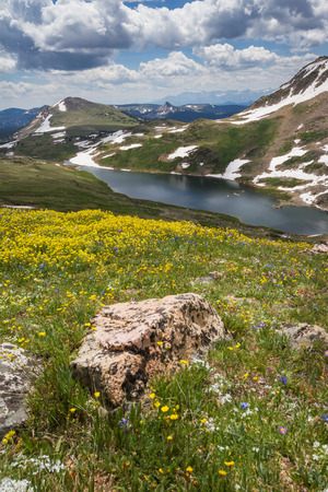 ground cover: beautiful view from the top of the mountain with colorful spring flowers as ground cover