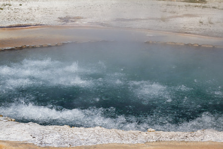 boiling: active geyser in yellowstone national park bright summer day