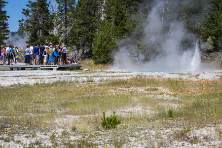 Yellowstone national park, Wyoming - July 22 : group of tourists standing watching a small geyser; July 22 2014 in Yellowstone national park, Wyoming