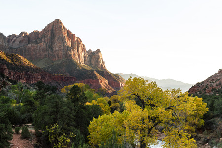 autumn view of the watchman tower and the virgin river in Zion National Park with an isolated white sky photo