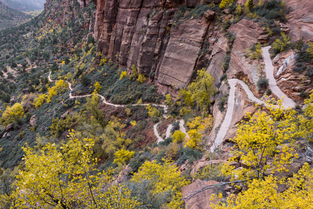 switchback: switchback trail in the Angels Landing hike at Zion National Park with autumn colors