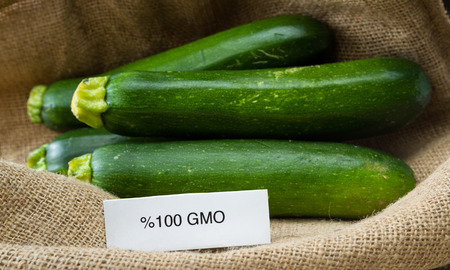 close up of fresh GMO zucchini or green squash with a burlap sac as a background