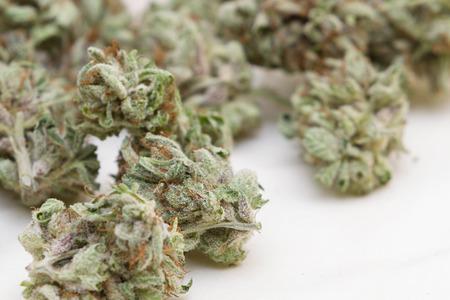 stash: close up of a stash of medicinal marijuana for a concept