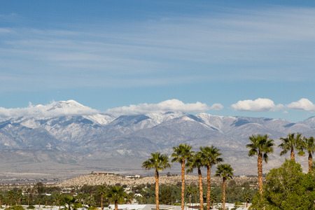 wintering: the contrast of winter in California. warm palm trees in the valley and snow in the high mountains