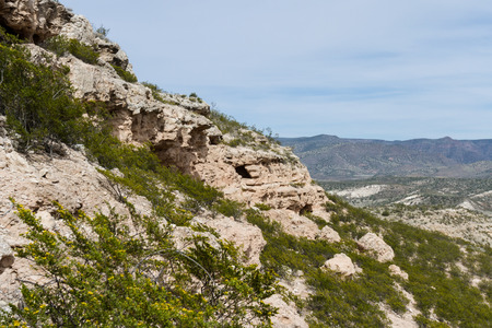 dwellings: well hidden Cliffs Dwellings in Arizona, shot is springtime with greenery