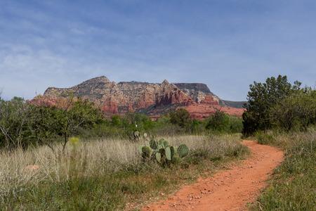 sedona: hiking trail in Sedona Arizona with red rock landscape and green spring vegetation Stock Photo