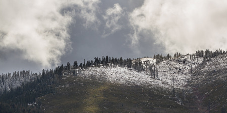 sierra snow: snow storm at the base of the Sierra Nevada mountains from the Nevada Side