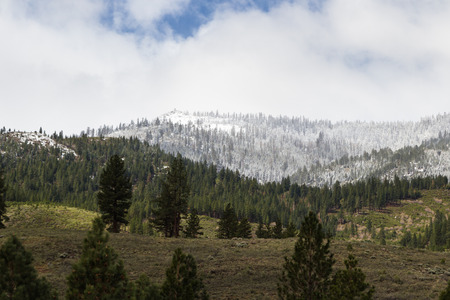 sierra snow: snow storm covering he fire watch tower at the base of the Sierra Nevada mountains from the Nevada Side Stock Photo