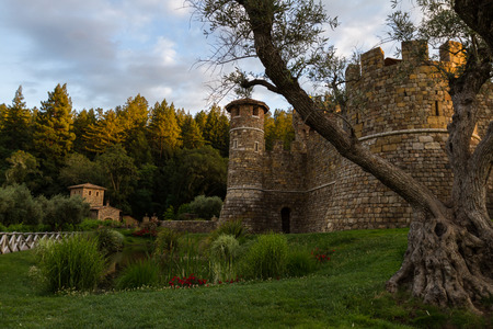 napa valley: Beautiful castle in Napa Valley at sunset with rich green grass and healthy old olive trees