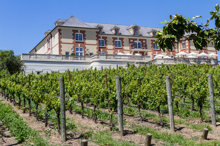 napa valley: Napa Valley, California - May 12 :Beautiful Chateau, Domaine Carneros a place to taste great wine, May 12 2015 Napa Valley, California. Editorial