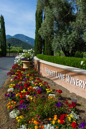 bennett: Calistoga, California - May 10 : Bennett Lane Winery entrance with beautiful flowers lining the driveway, May 10 2015 Calistoga, California.