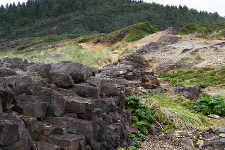 separating: natural feature in the central Oregon coast where lava rock filled cracks and solidified separating the earth