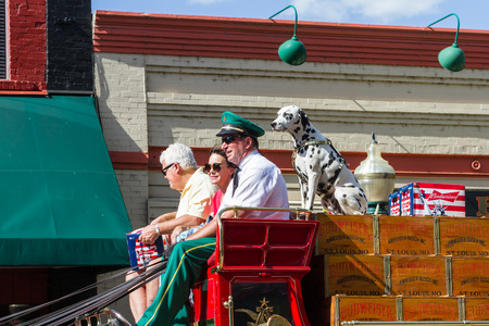 2 year old: Coeur d Alene, Idaho - June 12 : Chip, the 2 year old Budweiser dog touring  with the representatives on the  carriage, June 12 2015 in Coeur d Alene, Idaho Editorial