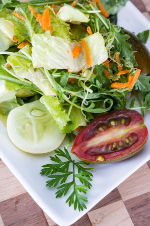 close up of a garden salad with different tiles of greens, tomato, and sliced lemon cucumber Imagens