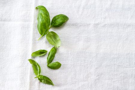 Verse basilicumbladeren op een witte tafelkleed