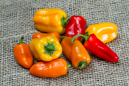 burlap sac: red, orange and yellow sweet peppers on a burlap background