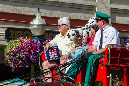 budweiser: Coeur d Alene, Idaho - June 12 : Chip, the 2 year old Budweiser dog touring  with the representatives on the  carriage, June 12 2015 in Coeur d Alene, Idaho Editorial