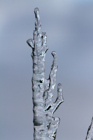 suspended: Icicles suspended over a light background with interesting shapes and textures