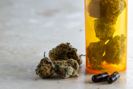 close up of a small capsule filled with a dark oil produced from the hemp plant as a medicinal marijuana concept