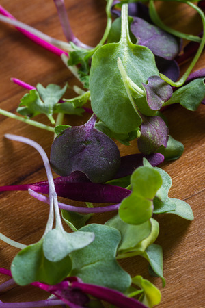 sourced: close up of mixed fresh organic micro greens to use in salads or other recipes