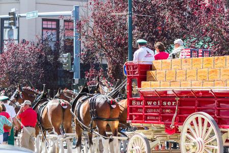 coeur: Coeur d Alene, Idaho - June 12 : Budweiser Clydesdales parade down Sherman avenue, June 12 2015 in Coeur d Alene, Idaho Editorial