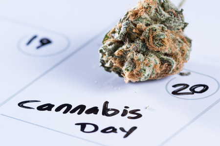 allocated on white: close up image for a concept using a calendar, a cannabis bud and a black marker to write the words cannabis day Stock Photo