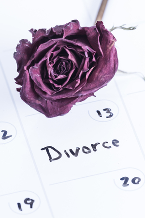 allocated on white: close up concept image for a divorce using a dry erase calendar and a dried dead rose Stock Photo