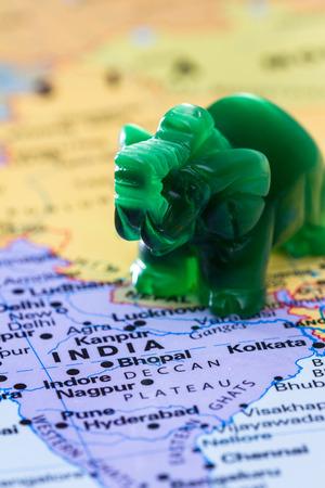 adn: vista de un mapa del mundo con la India en el foco del ADN de un pequeño elefante de jade Foto de archivo