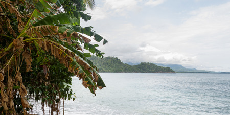 rocky beach in Costa Rica densely vegetated where the ocean meets lands