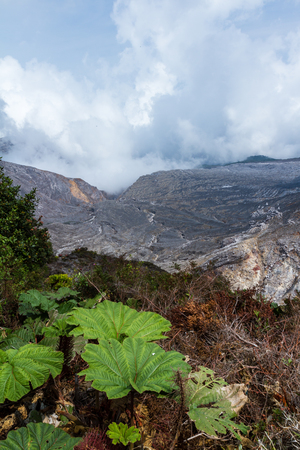 surrounding: close up of the area surrounding the Poas Volcano in Costa Rica showing erosion and details of the terrain