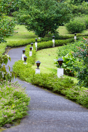 empedrado: well manicured walkway with lights and plants lining the path
