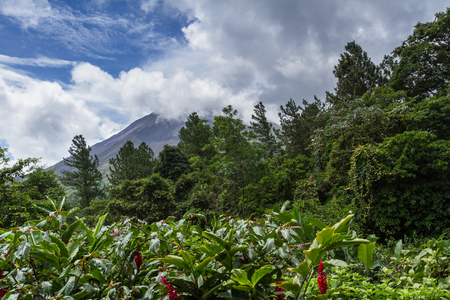 view of the Volcan Arenal in San carlos Costa Rica in the green season, a well know beautiful landmark