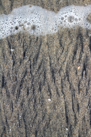 exposed: close up of a beach sand with different layers of white and black sand exposed