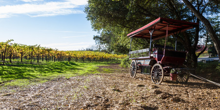 Alexander Valley, California - November 09: Old wine carriage parked next to a beautiful glowing vineyard in autumn.