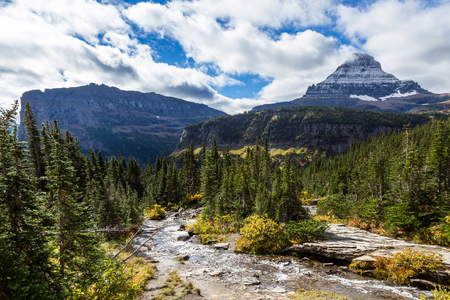beautiful water fall rising over rocks with golden autumn leaves int he background in Glacier NP, Montana