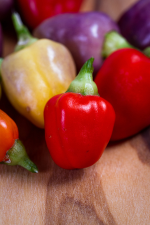 nightshade: close  up of a group of miniature peppers in a variety of colors placed on a wooden background