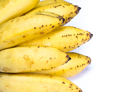 organic small bananas tree ripen with small imperfections isolated on a white background